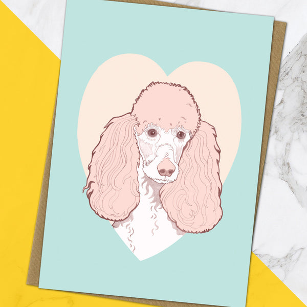 Poodle (Pack Of 6)