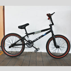 Matt Black Bicycle (Tampines)