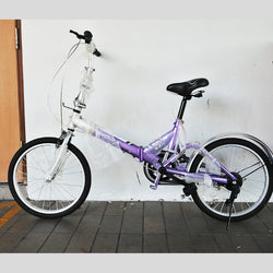 "Foldable 20"" Bicycle (Tampines)"