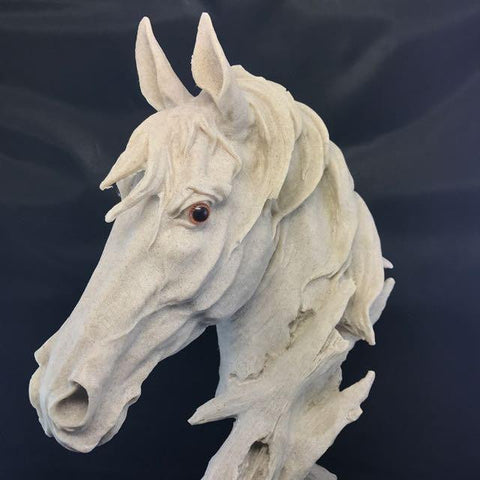 ONLY AVAILABLE AT OUR TOA PAYOH OUTLET - HORSE HEAD DISPLAY