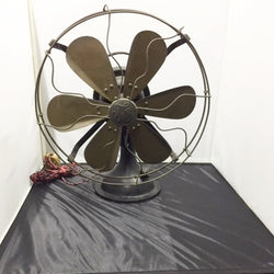 Antique Fan  (Tampines)