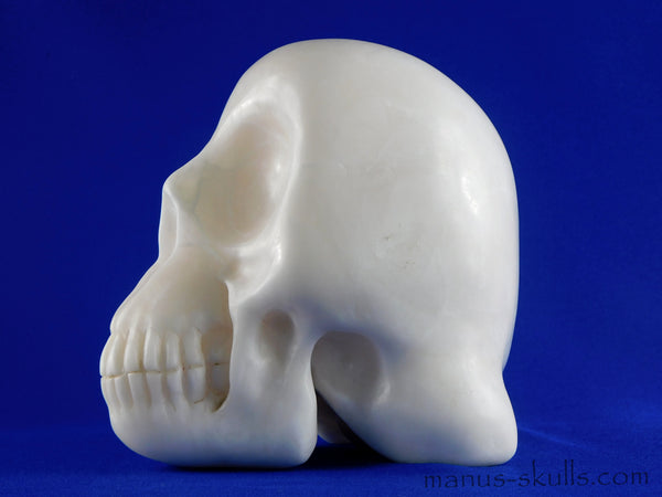 Large Human Size Sweet White Alabaster Manus SKULL .... NEW!