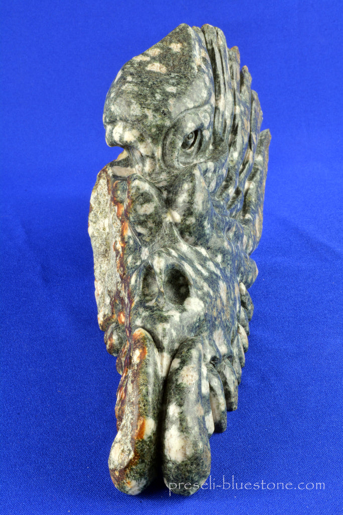 Impressive Large PRESELI BLUESTONE Dragon skull ...... NEW!!