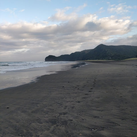 The shores of Piha beach, near Auckland