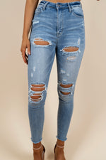 Ashley Distressed Skinny Jeans