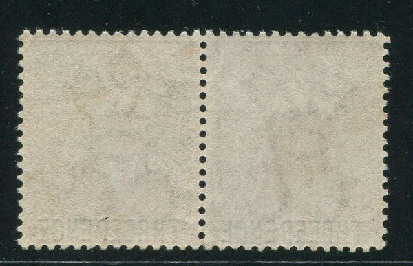CAPE OF GOOD HOPE 1880 SCARCE 3d OVERPRINT PAIR MNH!