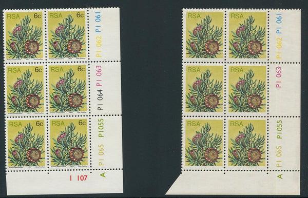 1977 PROTEA 6c  CONTROL BLOCK MISSING BLACK PRINTING (VALUE etc)  - RARE!