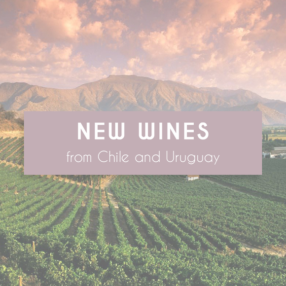 New Wines from Chile and Uruguay