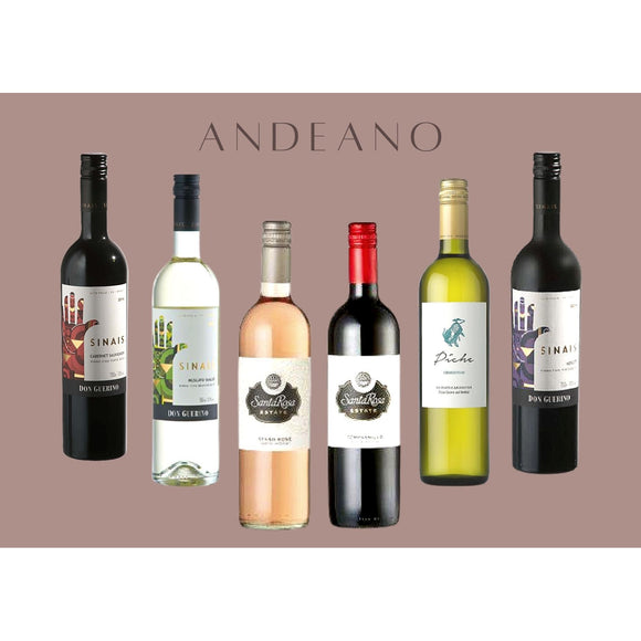 Andeano Mixed Case of 6 Bottles