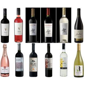 Floripa – 12 bottle mega mixed Argentina & Brazil case - Latin Wines Online