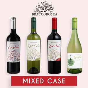 MIXED CASE Premium URUGUAYAN wines from Bracco Bosca - Latin Wines Online
