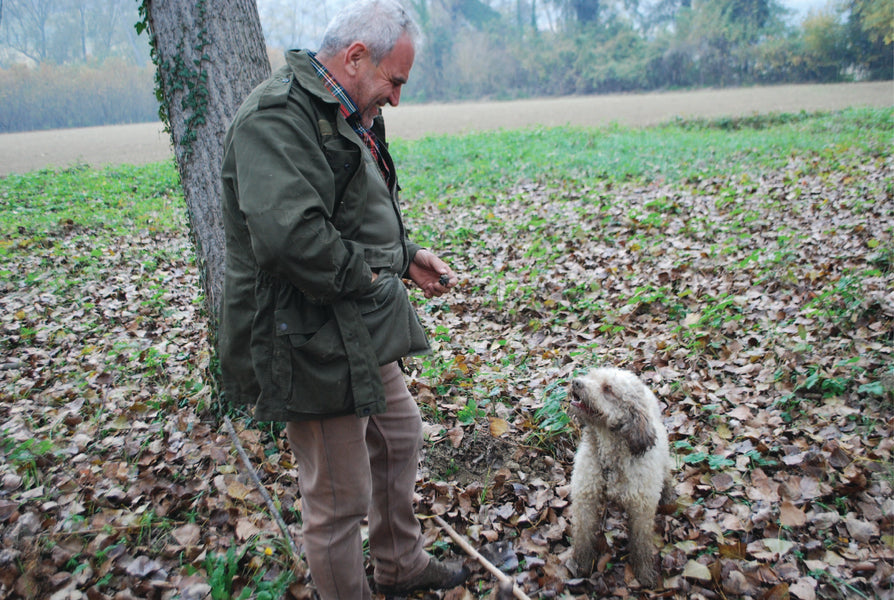 How to Find Truffles...