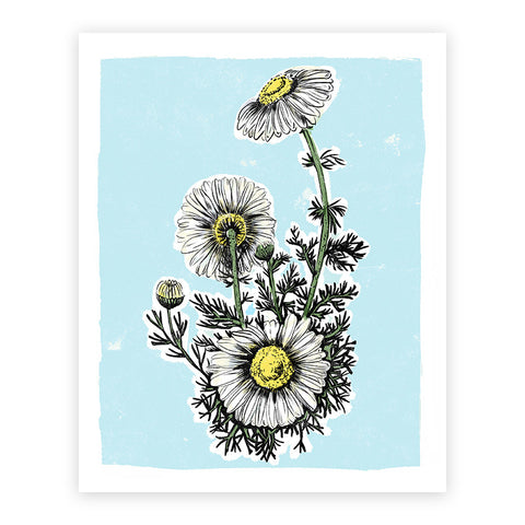 Daisy Illustrated Print 8.5x11""