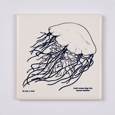 Jellyfish Coaster