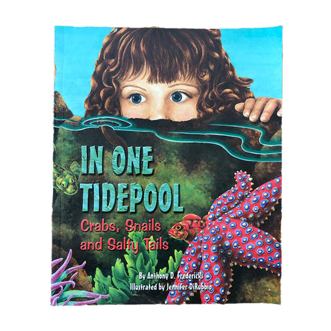 In one Tidepool