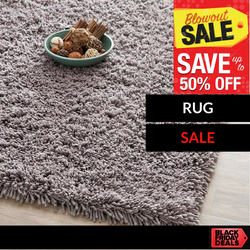 Enjoy huge Savings on our Rug selection