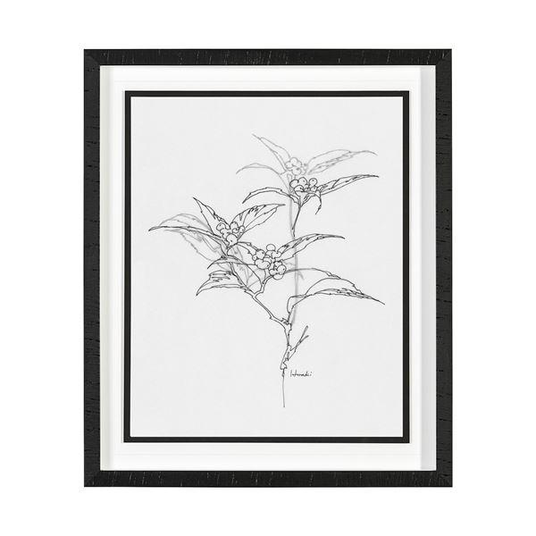 Arrangement - Botanical Framed Print - By Hiraki (6 Variations) | Print | parker-gwen