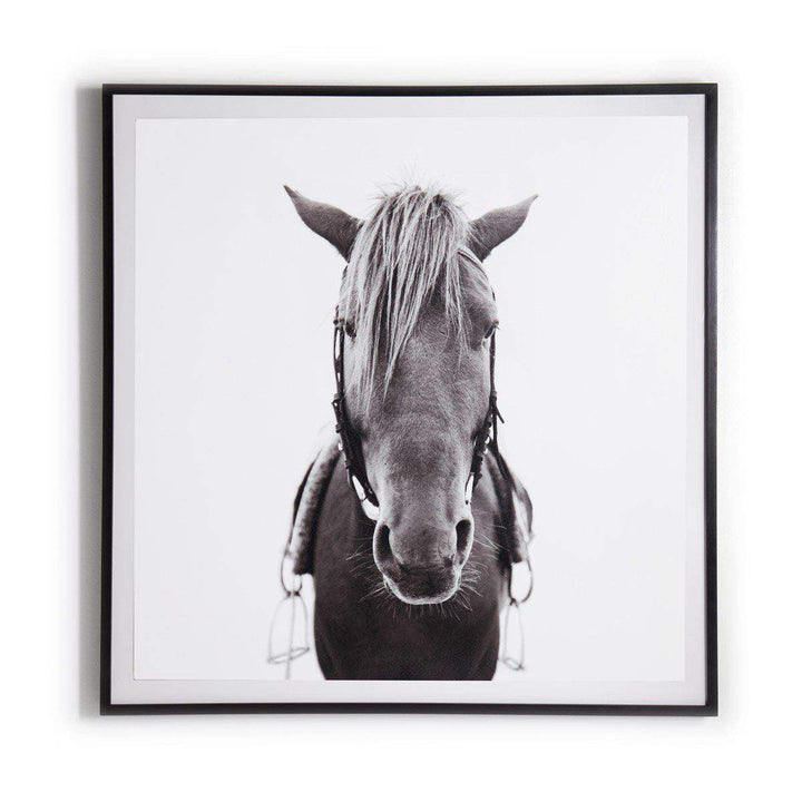 "Horse 40"" Photograph Black Maple Frame - Art Studio Collection - Parker Gwen"