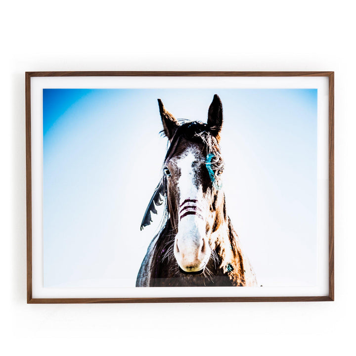 War Horse Photograph - Art Studio Collection | Print | parker-gwen