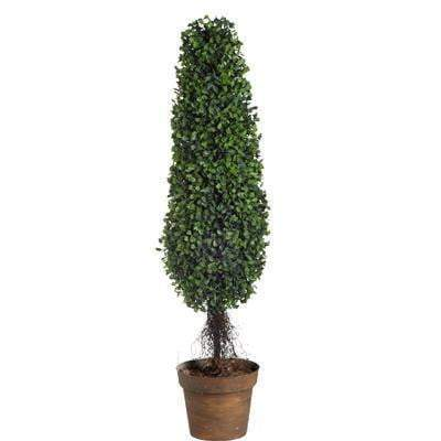 Boxwood Tree Topiary: 35