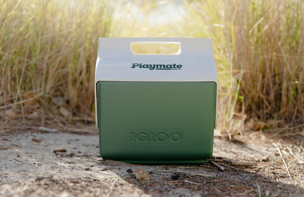 EcoCool Sustainable Cooler