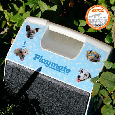 Image View | ASPCA Dogs Playmate Pal 7 Qt Cooler