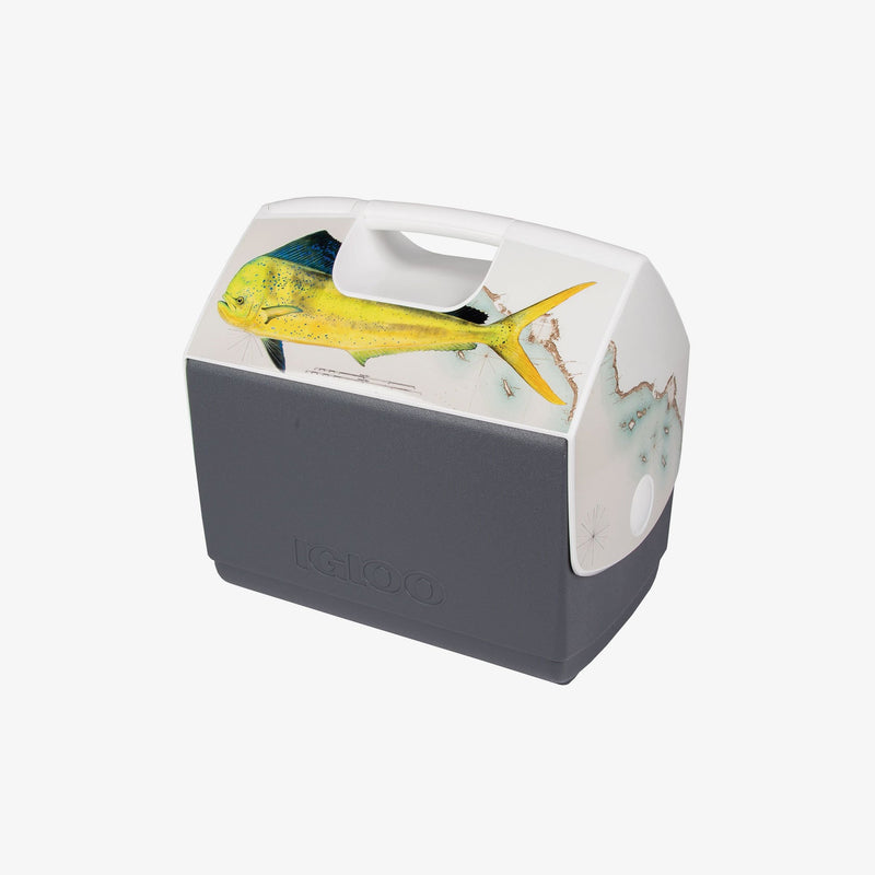 Large View | Amadeo Bachar Dorado Playmate Elite 16 Qt Cooler