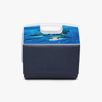 Back View | Amadeo Bachar Playmate Elite Paddy Yellowtail 16 Qt Cooler
