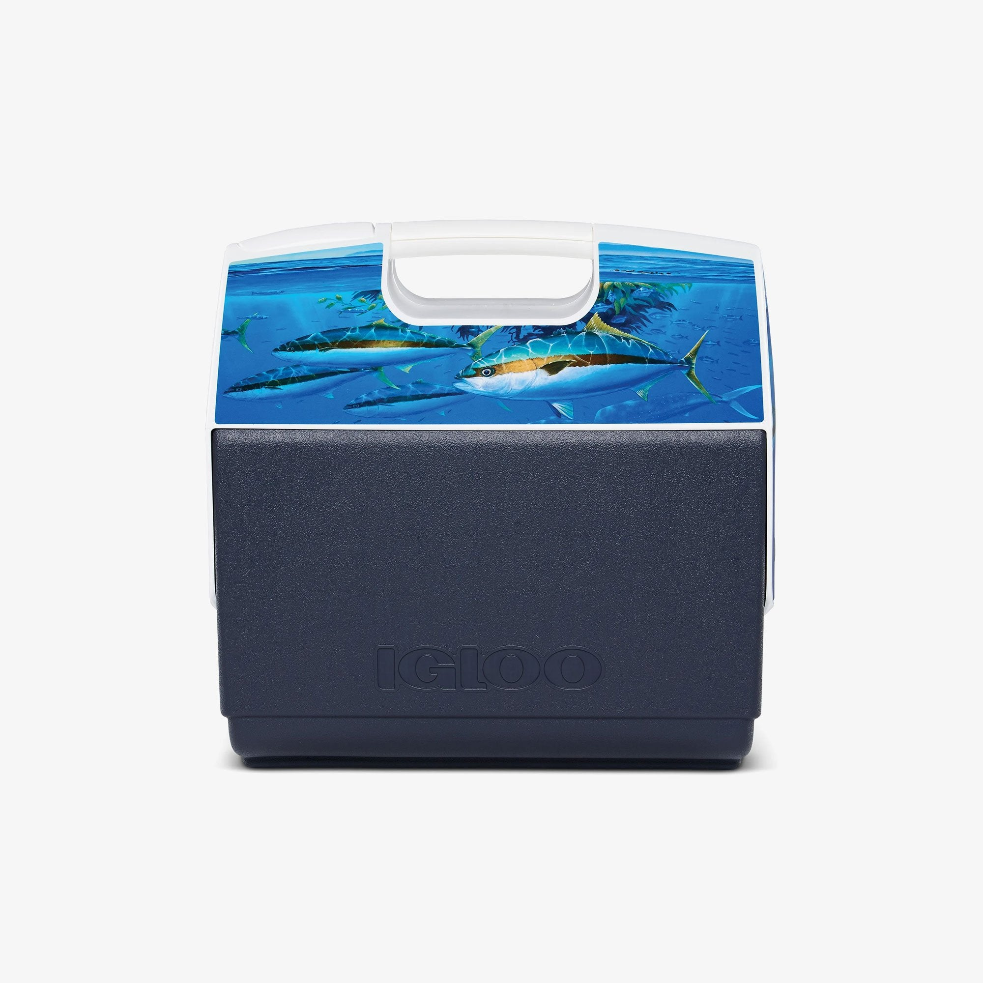 Large View | Amadeo Bachar Playmate Elite Paddy Yellowtail 16 Qt Cooler