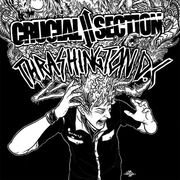 CRUCIAL SECTION | THRASHINGTON D.C. Split