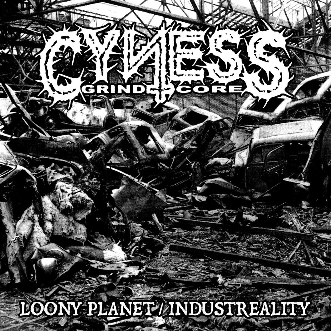 CYNESS - Loony Planet / Industreality