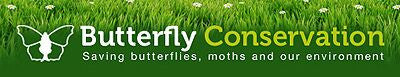 devon moths endorsed by the butterfly conservation