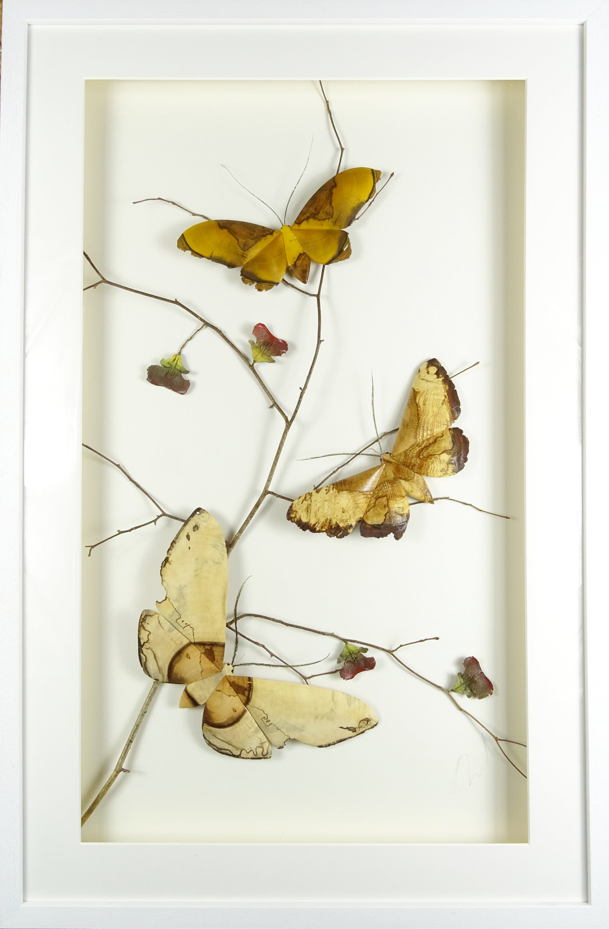 triple Moth - Yew, Alder and oak (Frame size 525 x 800) AVAILABLE NOW!