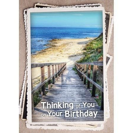 Along His Path, Box of 12 Assorted Birthday Cards (KJV)-Christian Greeting Cards-SonGear Marketplace-SonGear