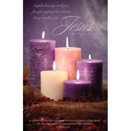 Hope Is born (Luke 2:20, KJV) Bulletins, 100