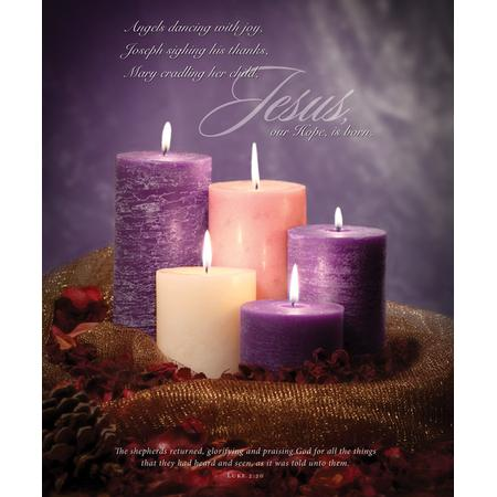 Hope Is born Large Bulletins (Luke 2:20, KJV) 100