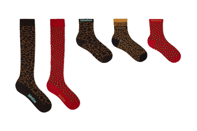 Dressed-up pack - set of 5 socks