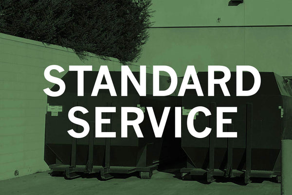 Annual Standard Service Options