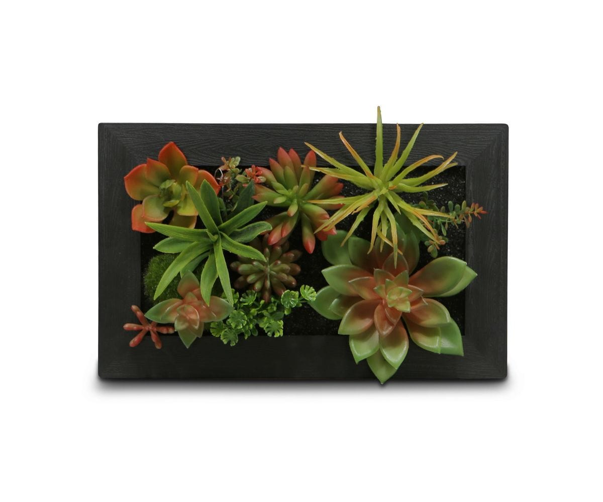 Decorative Faux Succulent Wall Hanging Dania Furniture