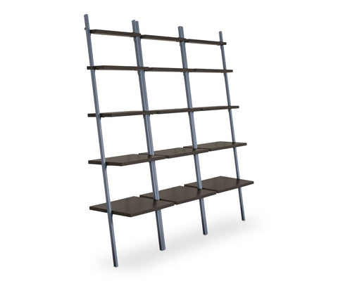 "Golia 30""W Leaning Bookcase"