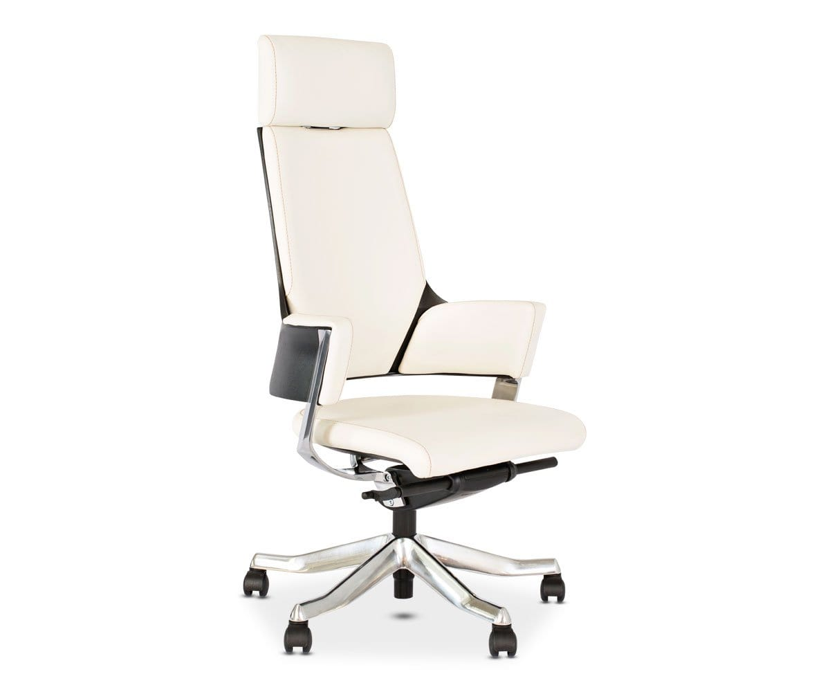 Leather Office Chair Delphi Dania Furniture