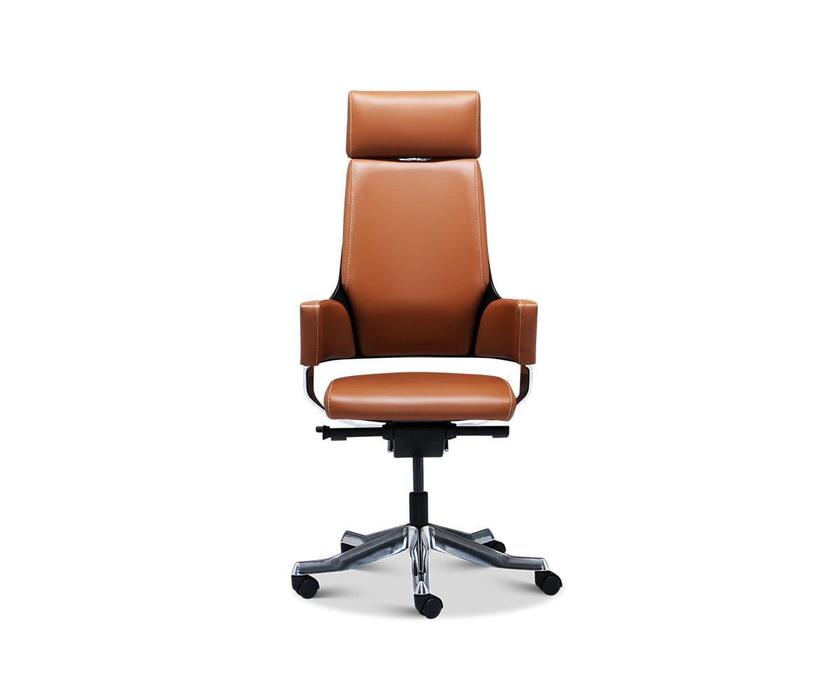 Picture of: Leather Office Chair Delphi Dania Furniture