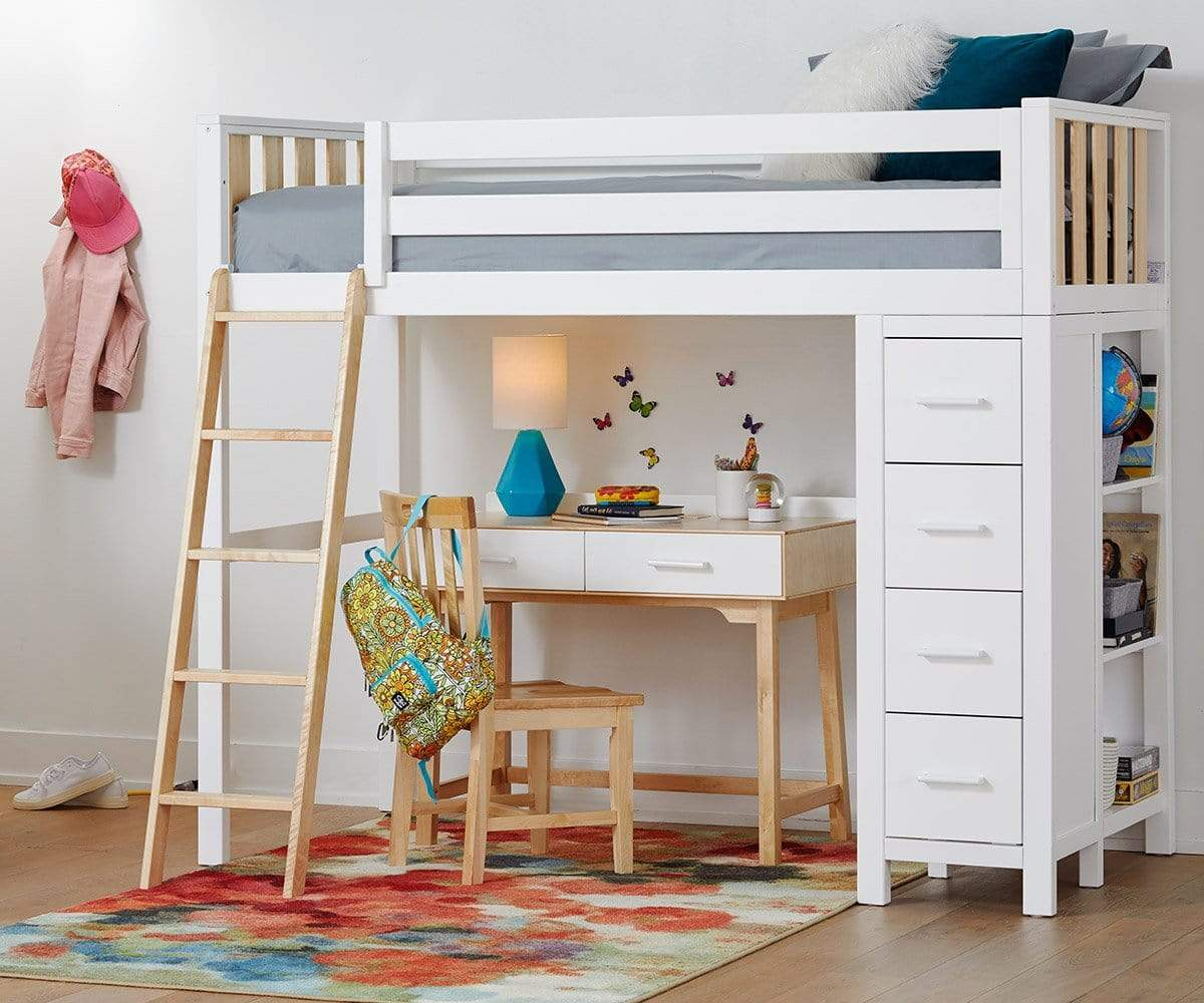 Picture of: Rowan Twin Loft Bed Dania Furniture