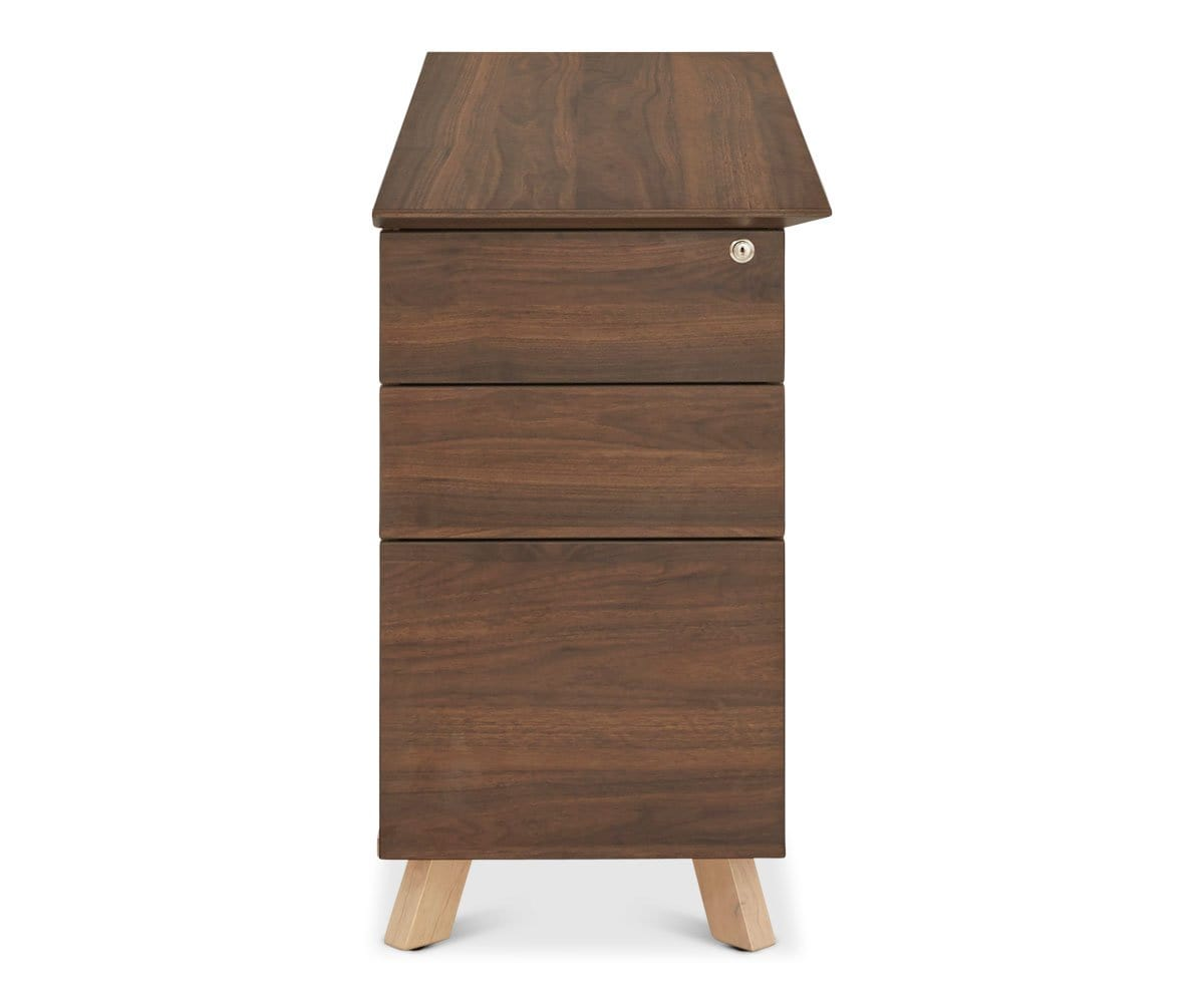 Thorsten Double Desk Cabinet