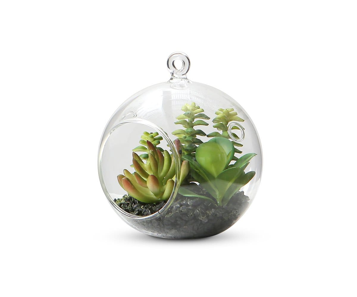 Ordered Faux Succulents in Hanging Glass Globe