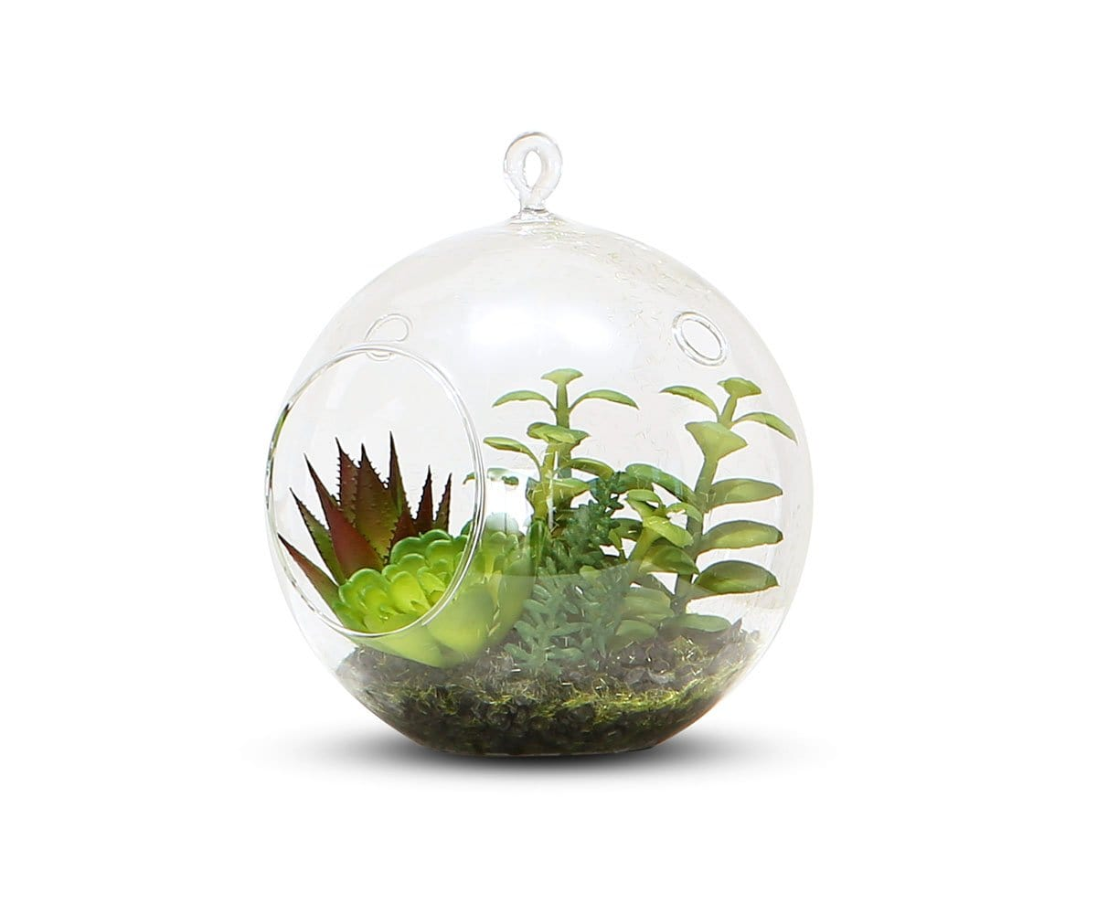 Branched Faux Succulents in Hanging Glass Terrarium