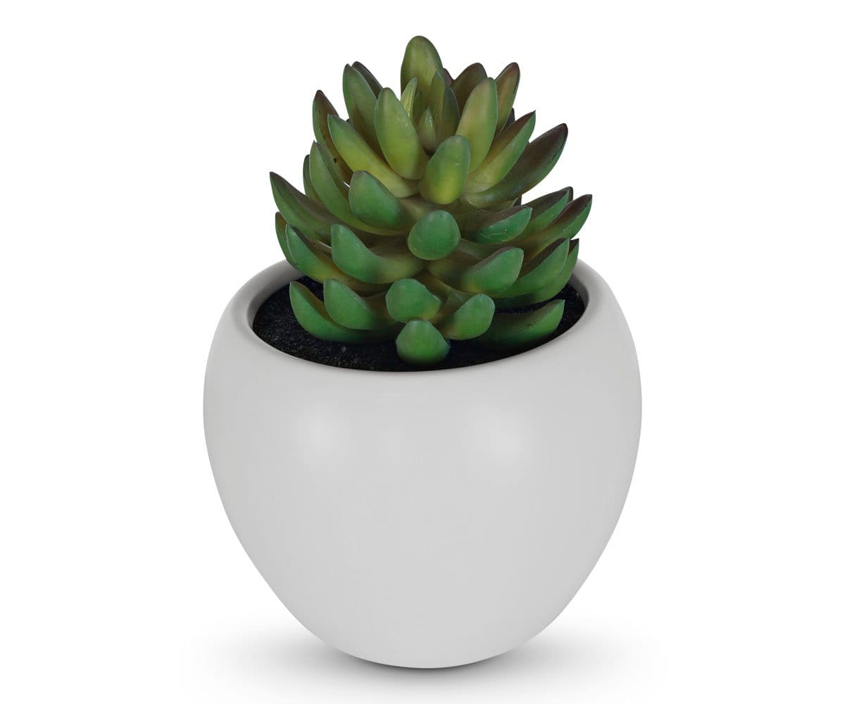 Small Potted Jade Faux Succulent