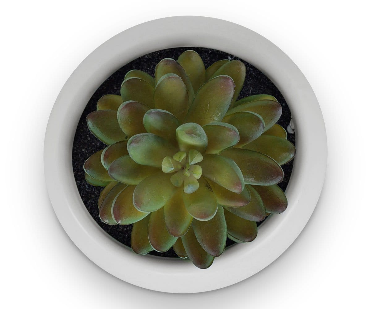 Round Pot with Faux Plant
