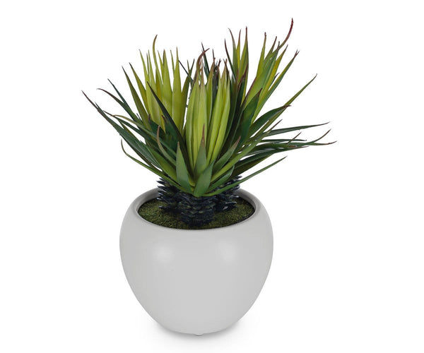 Small Potted Faux Palm Dania Furniture