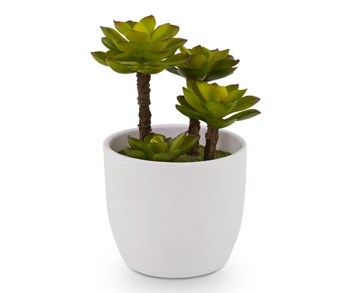 Potted Green Leafy Faux Succulent